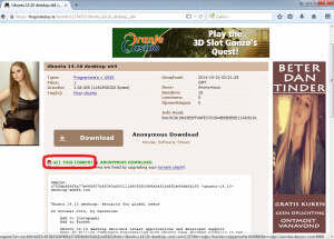 torrent downloaden